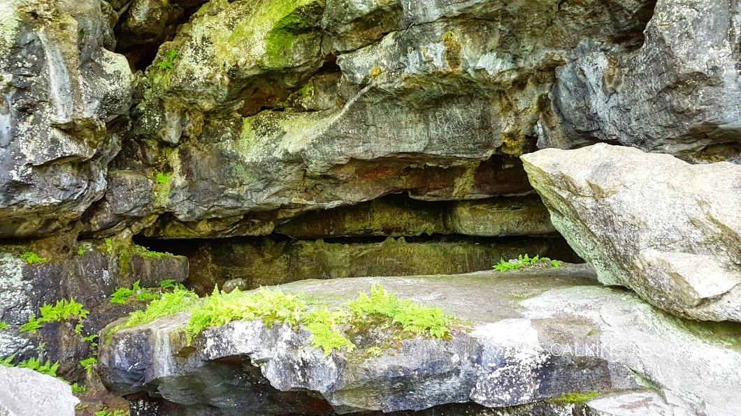 Greig's Caves rocks