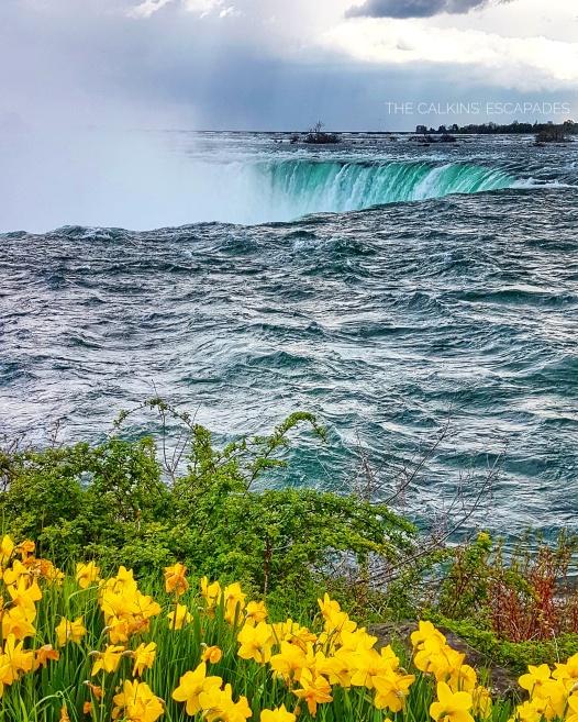 Niagara Falls at the horseshoe